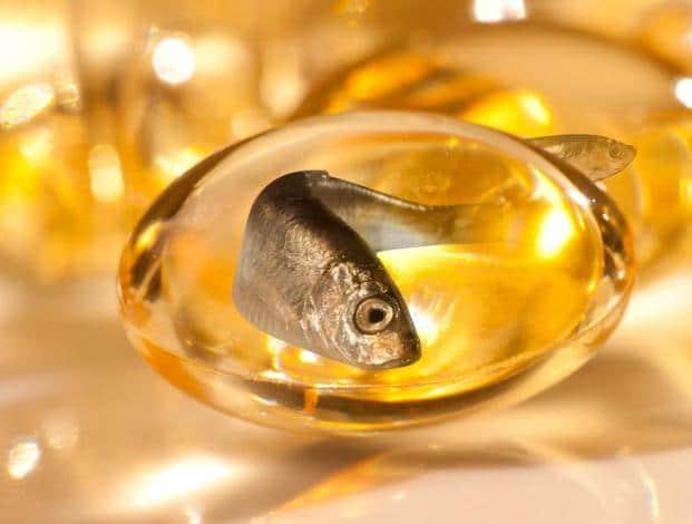 aceite de pescado dieta perros