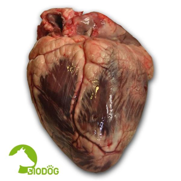 Corazón Vacuno