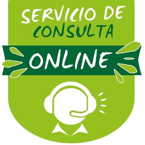 Servicio de Consulta Online