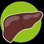 Vísceras Hierro, minerales y proteina