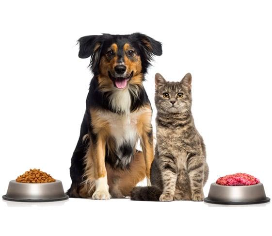 asesoramiento alimentacion natural