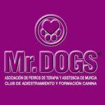 Mr.DOGS – Asociación de Perros de Terapia y Asistencia de Murcia